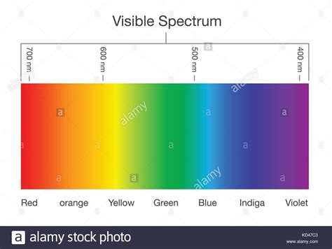 what are the colors of the visible spectrum eye lens diagram stock photos eye lens diagram stock