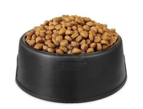 puppy food review 4 health performance food review we can help you to stop it all this guide is