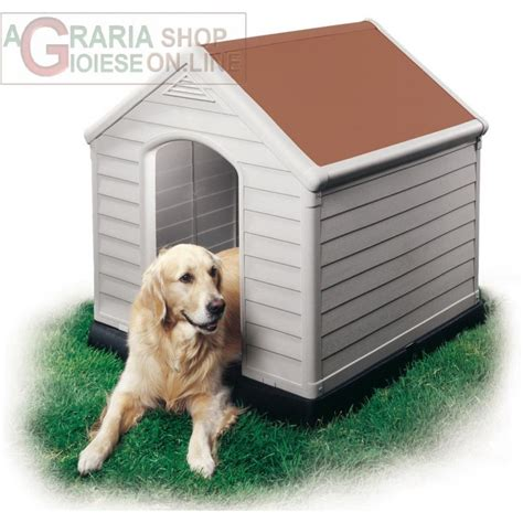 keter dog house cuccia per cani dog house keter tetto colore terracotta cm 95x99x99h
