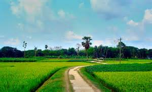 beautiful pictures beautiful bangladesh shams sourav flickr