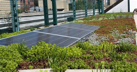 living roof solar system solar roofs in new york city schools become part of the