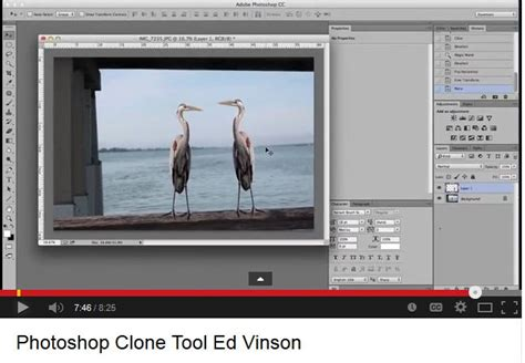 adobe photoshop rubber st tutorial using the adobe photoshop clone or quot rubber st quot tool and