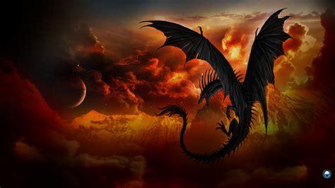 wallpaper black dragon top 50 hd dragon wallpapers images backgrounds desktop