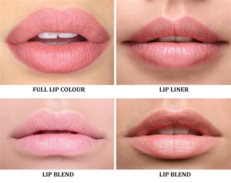 tattooed lip liner lip semi permanent makeup medicine of cosmetics