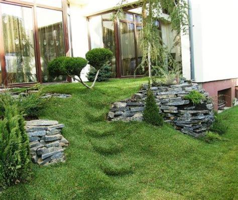 decorare exterioara casa amenajare rulouri de gazon arbori si arbusti plante de