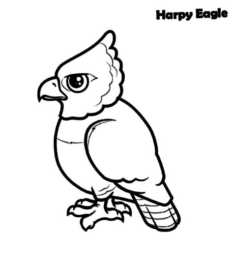 baby eagle coloring pages pin baby eagles coloring pages on pinterest