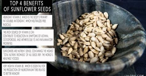 black sunflower seeds benefits we put sunflower seeds in our salads everyday and our powerballs of course they are a great