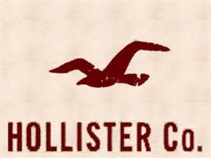 Hollister Pin Hollister Logo On Pinterest