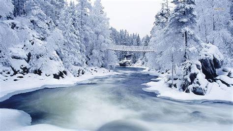 Snowy Wallpaper