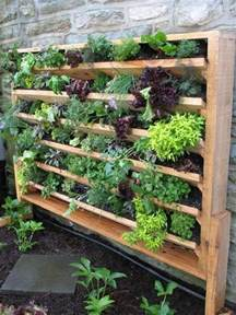 How To Make An Indoor Wall Garden - 25 best ideas about vertical gardens on pinterest wall gardens vertical garden wall and