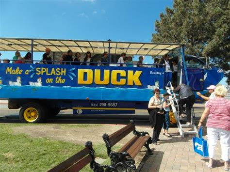 san diego boat bus tour seal tour vechicle picture of san diego seal tours san