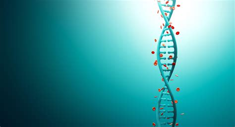 art design genetic screens medicine wallpapers wallpaper cave