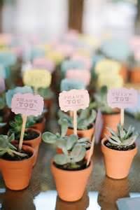 Wedding Favor Plant by 25 Best Ideas About Succulent Wedding Favors On