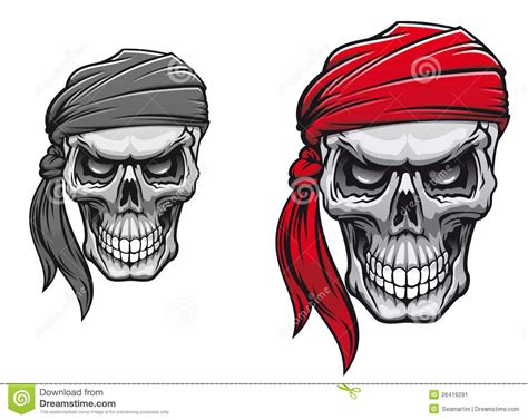 pirate skull stock image image 26419291