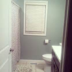 Sherwin Williams Silvermist sherwin williams silvermist paint bathroom colors bathroom makeovers