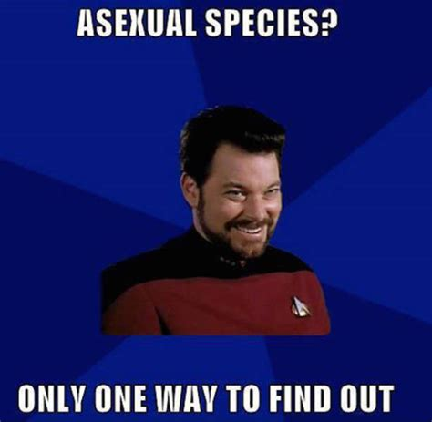 Raunchy Memes - star trek memes so nerdy they re actually funny 41 pics