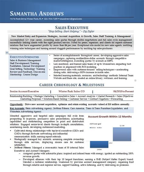 executive resume sles 2015 sales executive resume career steering premium executive