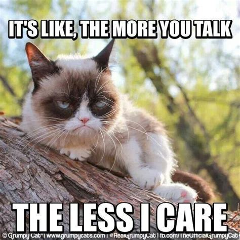 Original Grumpy Cat Meme - 133 best images about grumpy cat on pinterest saint