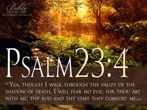 Psalm For Comfort by Trust In God Psalm 23 4 10 10 11 Philippians 4 13