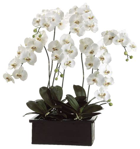 lifelike white phalaenopsis orchid arrangement in