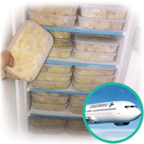 Freezer Di Medan durian kupas medan manis non pengawet ucok durian