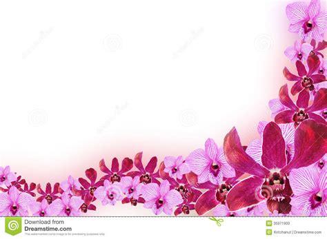 design flower purple purple floral border clipart 61