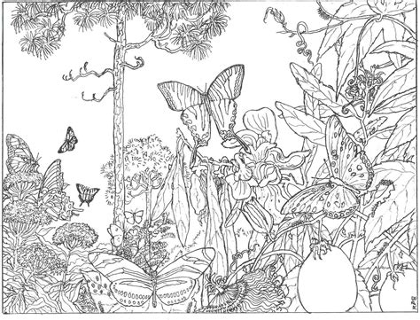 forest coloring pages intricate coloring pages for adults the longleaf forest