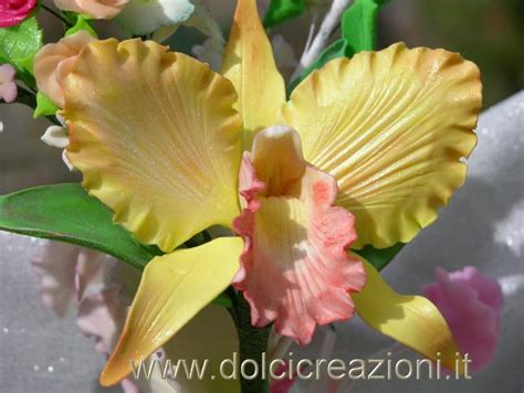 fiori in pdz passo passo dolci creazioni by carla orchidea in pasta di zucchero