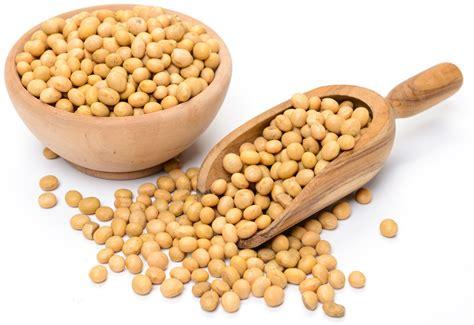 cucinare soia gialla soia le propriet 224 in cucina ed effetti benefici