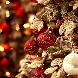 christmas day pictures weneedfun
