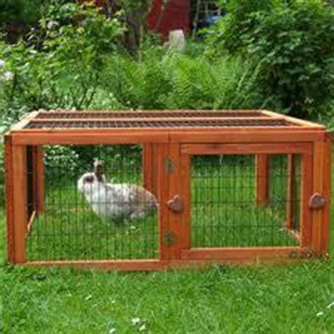 dove comprare nani da giardino recinti esterni per conigli altri animali