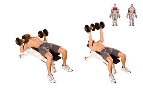 chest exercises without bench workout a chest and back coach