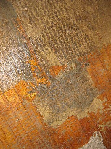 Rug Padding For Hardwood Floors by Carpet Padding Carpets And Hardwood Floors On