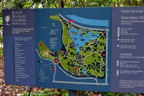 Map Of Melbourne Botanical Gardens Melbourne Botanical Botanical Garden Photography