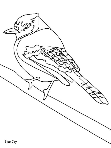 coloring page of arteries free coloring pages of arteries of the heart