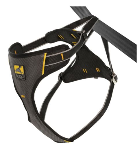 car harness for dogs what is the best car harness for your