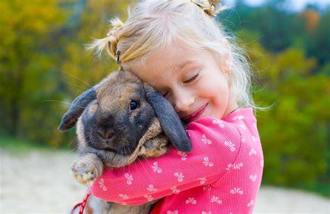 Hamac Lapin by 6 Bonnes Raisons D Adopter Un Lapin Depuis Mon Hamac
