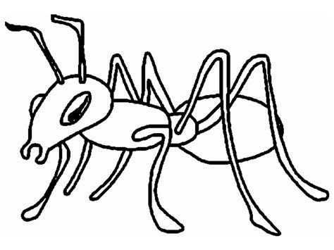 queen ant coloring page ant coloring page ant cartoon and printable ants
