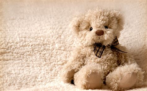 free wallpaper of teddy bear download white teddy bear wallpaper free download 74129 7636