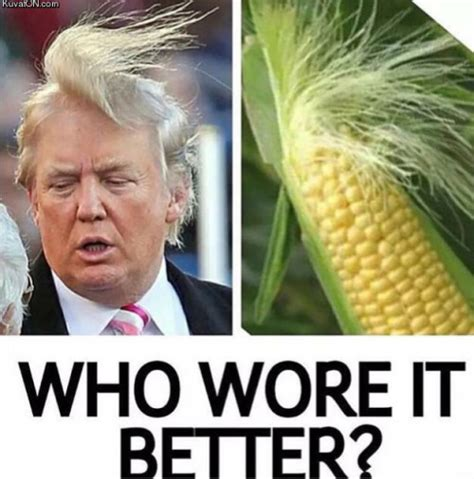 Who Wore It Better Meme - who wore it better donald trump memes and comics