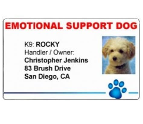 Official Id Cards For Your Emotional Support Animal Vest Emotional Support Id Template
