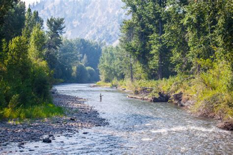wood river woodworking a family friendly 48 hour itinerary exploring the wood