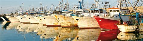 porto civitanova marche comune di civitanova marche turismo