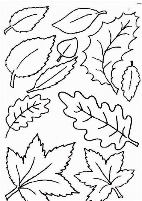 printable autumn leaves coloring home