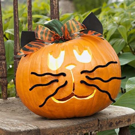 easy adorable  carve kitty pumpkin pictures