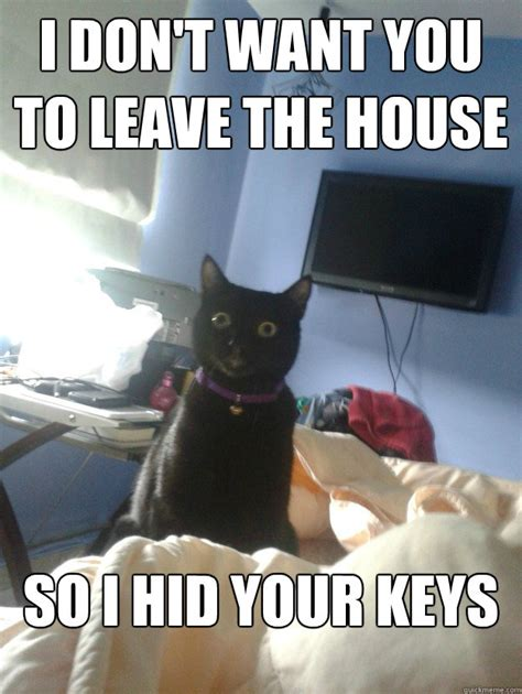 don t want to leave the house i don t want you to leave the house so i hid your keys overly attached cat quickmeme