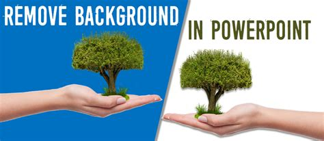 how to remove background in powerpoint how to remove the background from the image in powerpoint