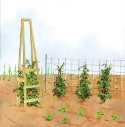 Wooden tomato trellis plans plans diy free download collapsible picnic