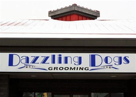 haircuts west edmonton mall dazzling dogs grooming edmonton ab 18920 87 ave nw