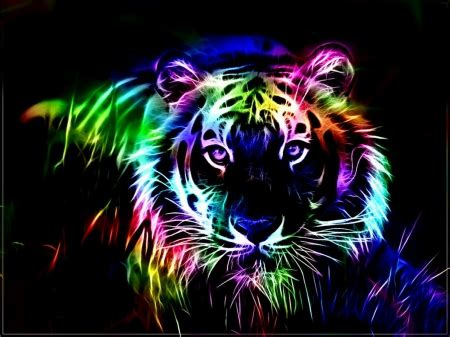 wallpapers of colorful animals colorful fractal tiger cats animals background